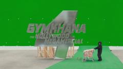 gymkhana4_logo_d